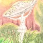 20121205 -bokuscan -mushroomlady 001